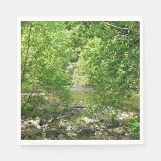 Patapsco River View Maryland Nature Photography Paper Serviettes