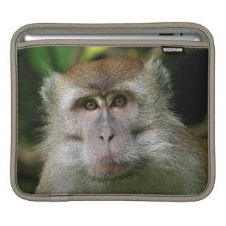 Patas Monkey iPad Sleeve