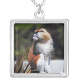 Patas monkey silver plated necklace