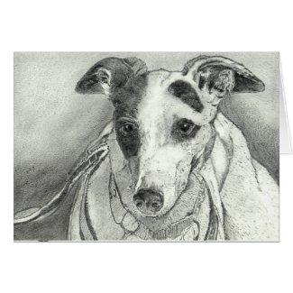 Patch - Greyhound art card (a13) title=