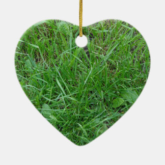 Patch of Grass Ornament