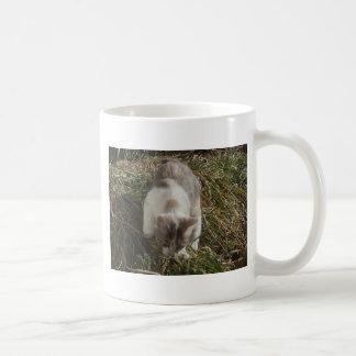 Patches Exploring Basic White Mug