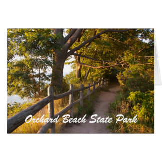 Path at Orchard Beach State Park Greeting Card
