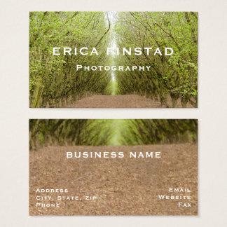 Path between hazelnut tree forest business card
