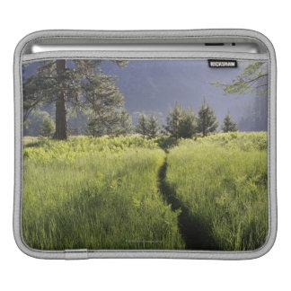 Path in meadow, Yosemite National Park iPad Sleeve