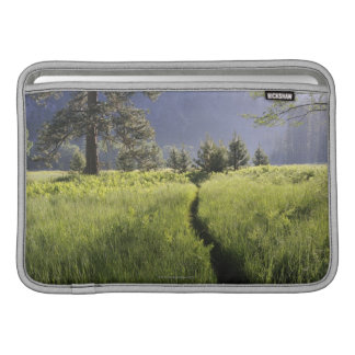 Path in meadow, Yosemite National Park MacBook Sleeve