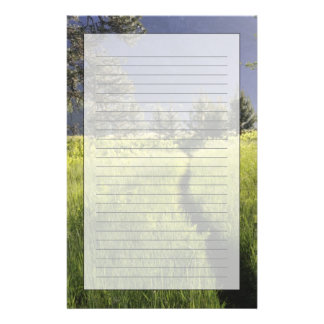Path in meadow, Yosemite National Park Stationery