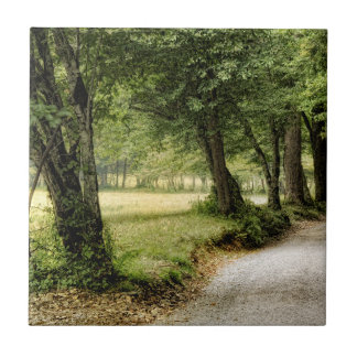 Path in the Country Tile
