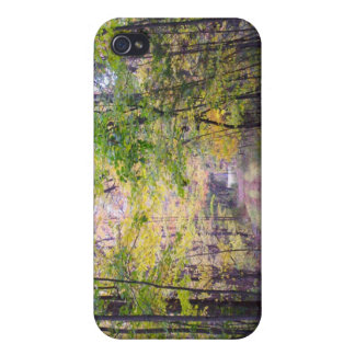 Path in the Woods Autumn Trail iPhone 4 Covers