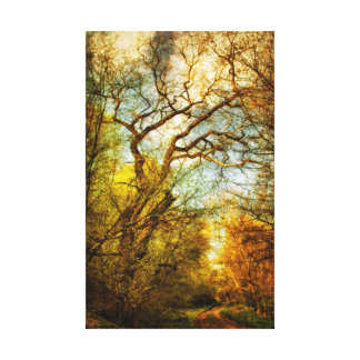 path in the woods canvas prints