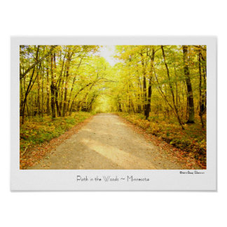 Path in the Woods ~ Minnesota ~ Travel Poster