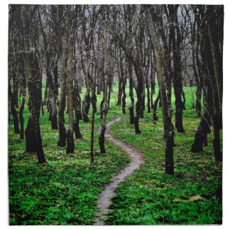 Path Napkin