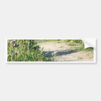 path of flowers bumper sticker