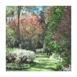 Path of Green Grass Among Colored Trees of Pink Canvas Print