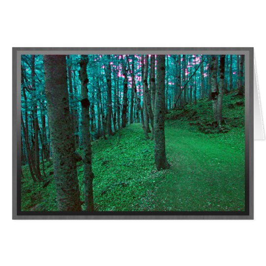 Path through a dark green forest card