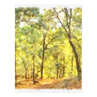 Path through a forest postcard