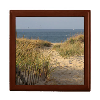 Path through the dunes to Race Point Beach Large Square Gift Box