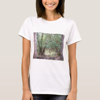 Path Through the Forest T-Shirt