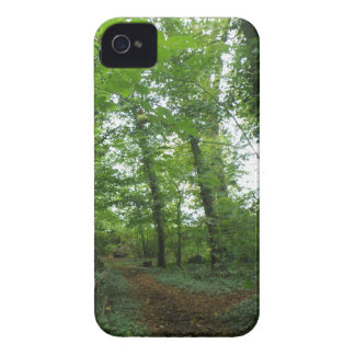 Path through the Green Forest Blackberry Bold Case