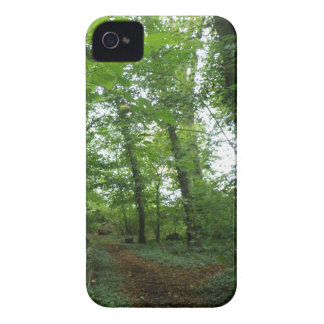 Path through the Green Forest iPhone 4 Case