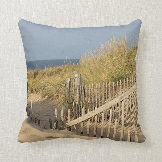 Path through the sand dunes cushion
