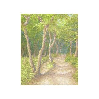 Path Through the Trees, Leith Hill Canvas Print