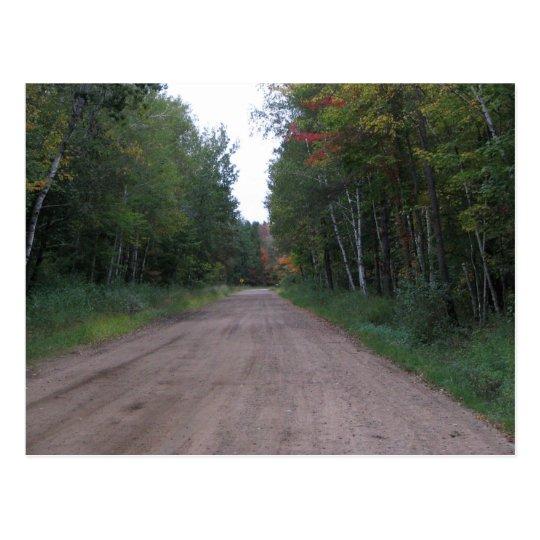 Path Through the woods Postcard