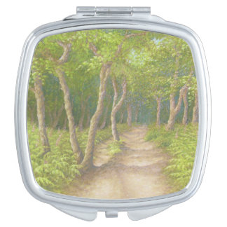 Path Through Trees, Leith Hill, Surrey in Pastel Vanity Mirror