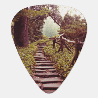 Path To Light Guitar Pick
