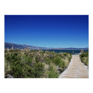 Path to Mono Lake Poster