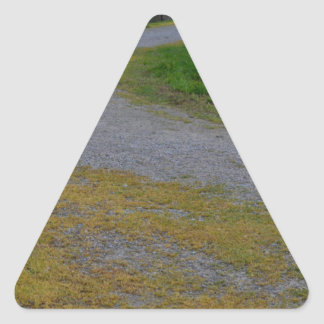 pathway at lillydale lake triangle sticker