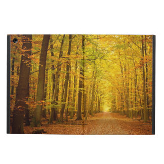 Pathway in the autumn forest iPad air case