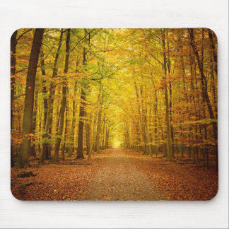 Pathway in the autumn forest mouse pad