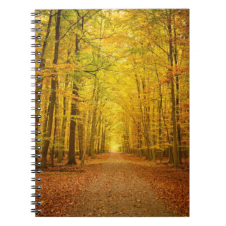 Pathway in the autumn forest notebook