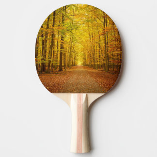Pathway in the autumn forest ping pong paddle