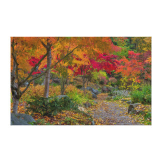 Pathway leads to park bench canvas print