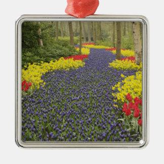 Pathway of Grape Hyacinth, daffodils, and Christmas Ornament