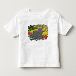 Pathway of Grape Hyacinth, daffodils, and Toddler T-Shirt