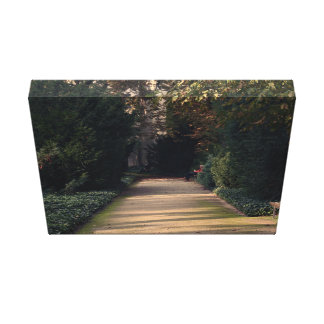 Pathway through green trees and plants gallery wrap canvas