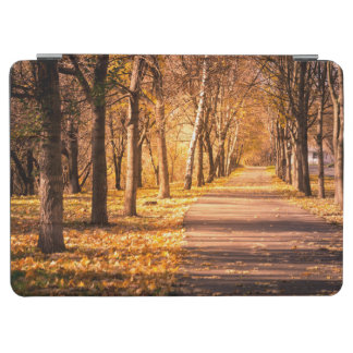 Pathway Through The Autumn Forest iPad Air Cover