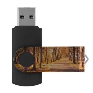 Pathway Through The Autumn Forest USB Flash Drive