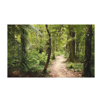 Pathway through the Bush Canvas Print