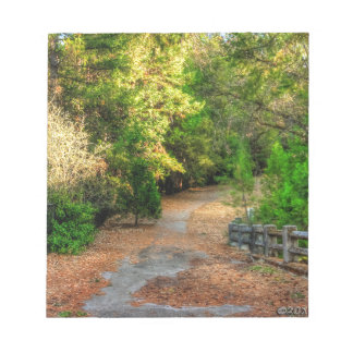 Pathway winds through a Northern Calif forest Notepad