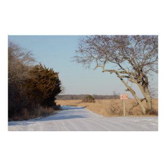 Pathway with Trees at the Refuge Poster