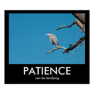 PATIENCE, can be terrifying Demotivational Poster