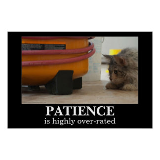 Patience Cat and Mouse Demotivational Poster