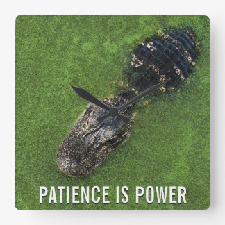Patience is Power • Alligator • Florida Nature Square Wall Clock