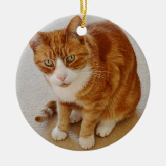 Patient Pumpkin. Christmas Ornament