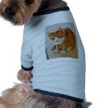 Patient Pumpkin. Doggie Tee Shirt