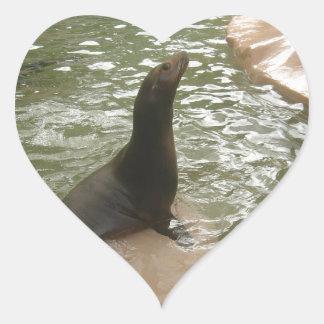 Patient Seal Sticker